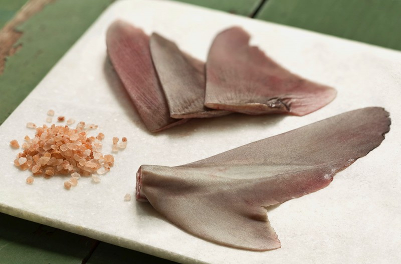 Frozen Dogfish Fins & Tails